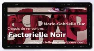"""Factorielle Noir par Marie-Gabrielle Duc - à propos de """"Scrap"""" de David Noir"""